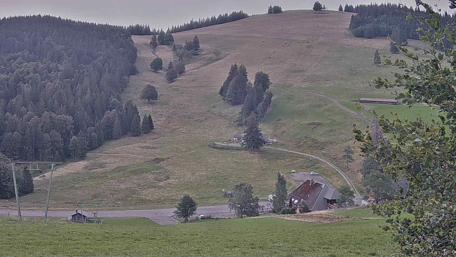 Webcam Stollenbacher Hof